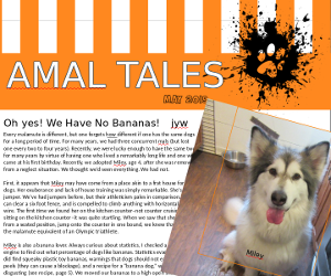 May 2019 AMAL Tales Cover